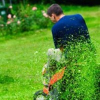Lawn Care Professionals